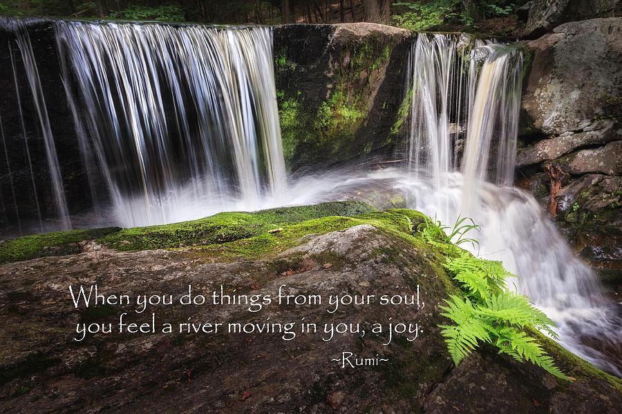 Rumi Photograph - Joy by Bill Wakeley