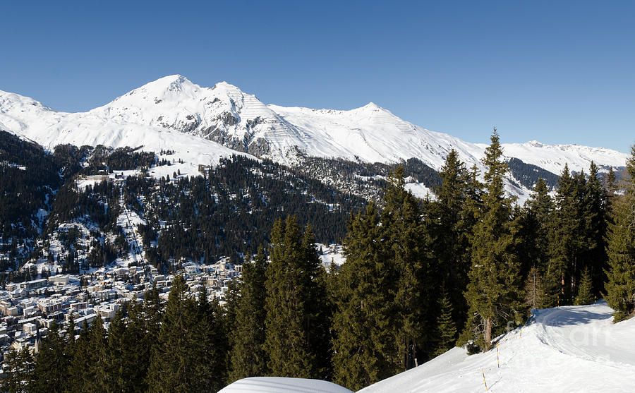 Jschalp Forest Davos Mountains And Town Photograph