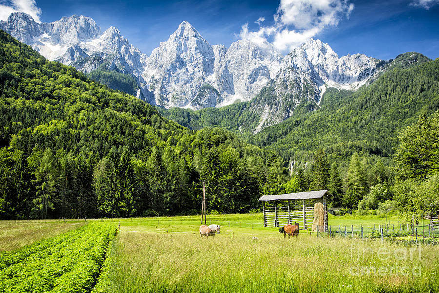 Slovenia Photograph - Julian Alps Farm by Timothy Hacker