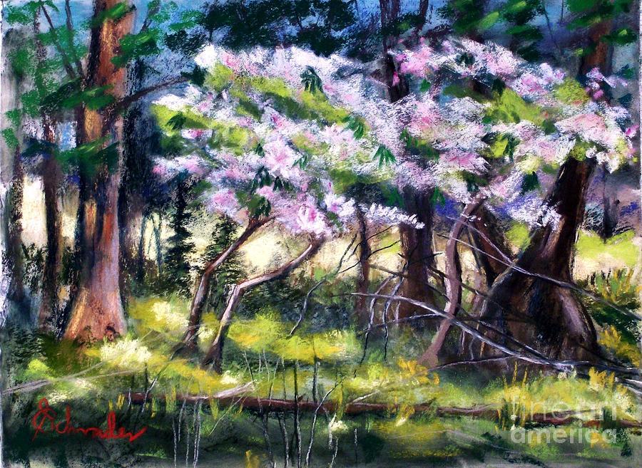 Landscape Pastel - July Bloom by Bruce Schrader