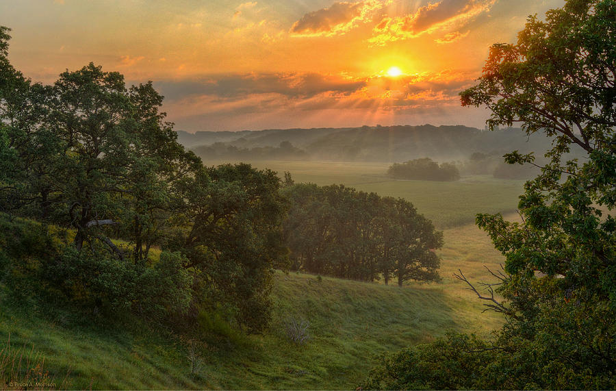 Summer Landscapes Photograph - July Morning Along The Ridge by Bruce Morrison