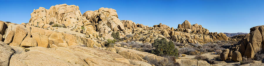 Joshua Tree Photograph - Jumbo Rocks by Kelley King