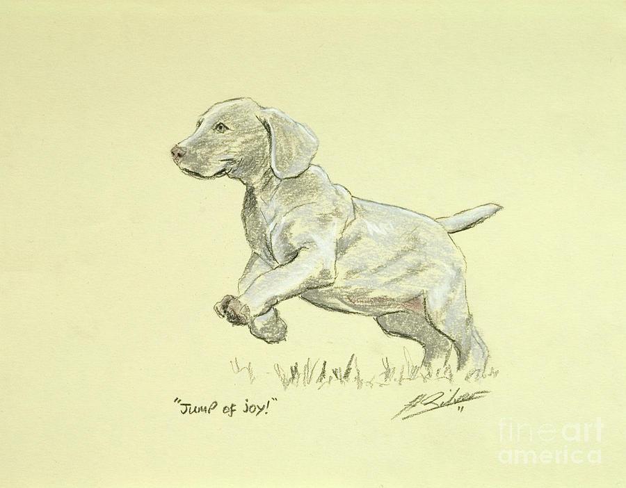 Weimaraner Pastel - Jump Of Joy by John Silver