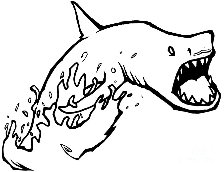 Shark Drawing - Jumpin Sharks Batman by Stef Schultz Sorry Little Sharky