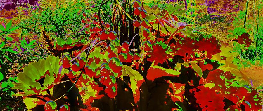 Jungle; Swamp; Landscape; Landscape Abstract; Abstract;red;green;yellow; Colorful;colorful Abstract;surreal; Branches; Leaves; Plant;plants; Photography;digital Art;abstract Digital Art;       Digital Art - Jungle Abstract by Mike Breau