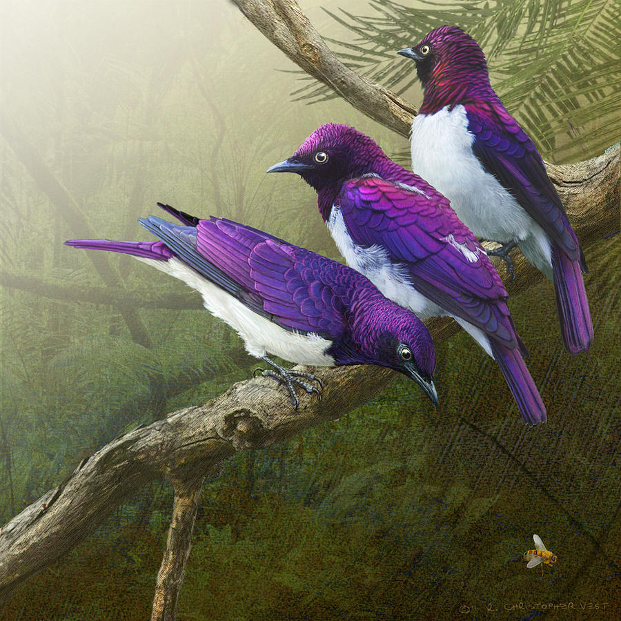 African Digital Art - Jungle Mist -amethyst Starlings   by R christopher Vest