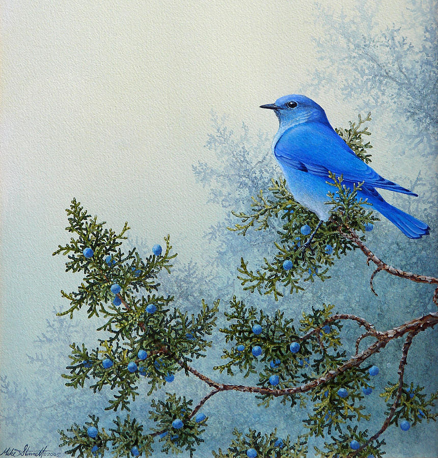 Blue Painting - Juniper Berries by Mike Stinnett