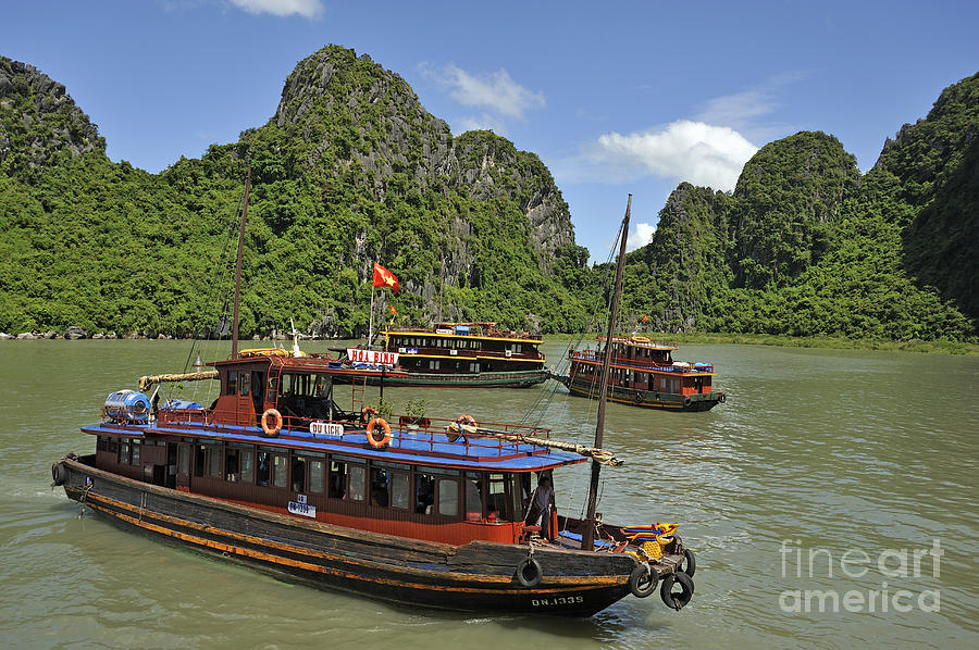 Halong Photograph - Junk Boats In Halong Bay by Sami Sarkis