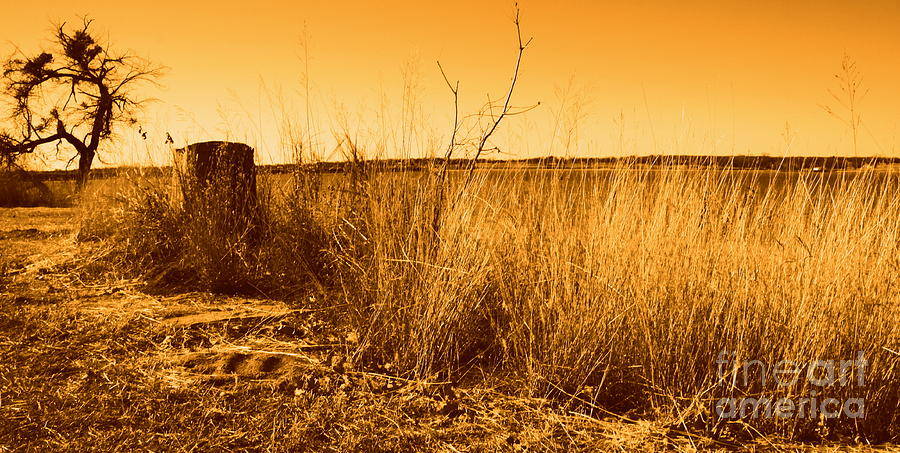 Landscape Photograph - Just A View by Mickey Harkins