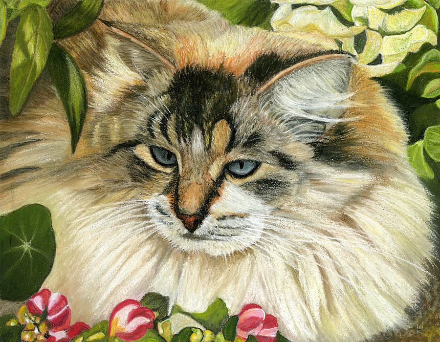 Cat Painting - Just Chillin by Sarah Dowson