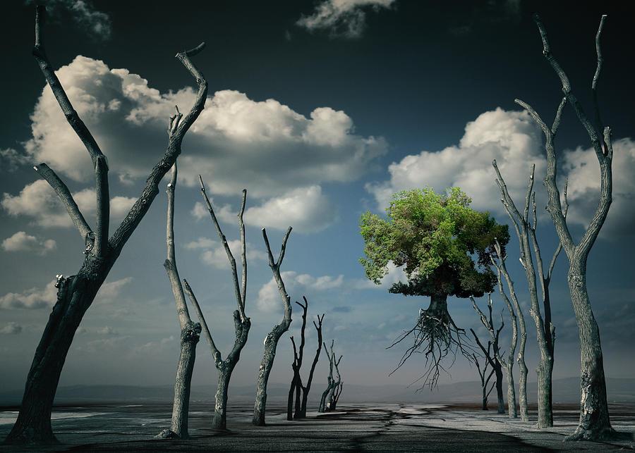 Surreal Digital Art - K81 by Radoslav Penchev