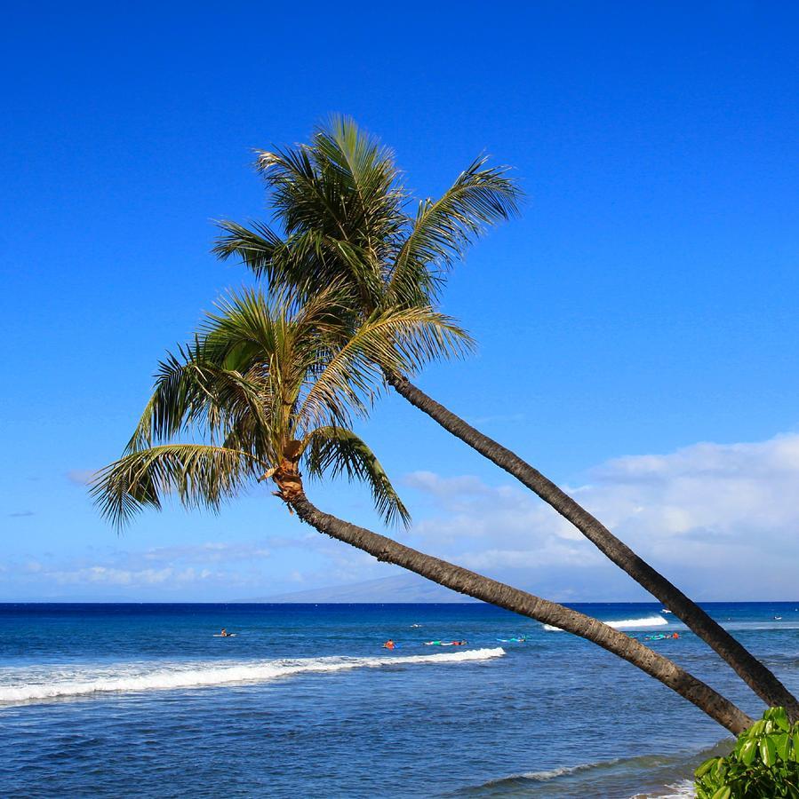 Maui Photograph - Kaanapali Hawaii by DJ Florek