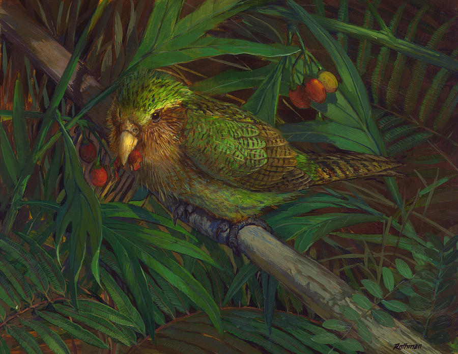 Wildlife Painting - Kakapo Nighttime Feeding by ACE Coinage painting by Michael Rothman