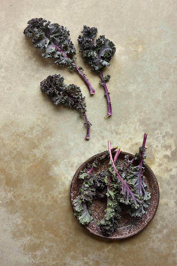 Kale Photograph by Lew Robertson