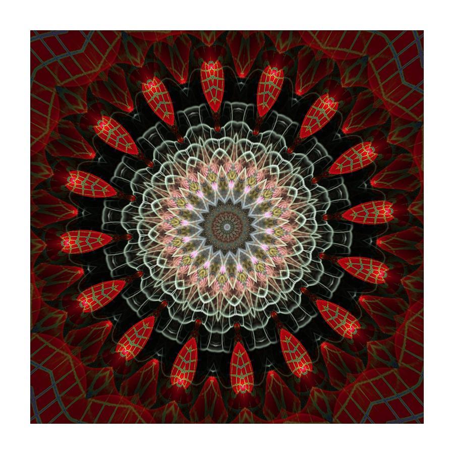 Kaleidoscope Digital Art - Kaleido Chakra I by Ck Gandhi