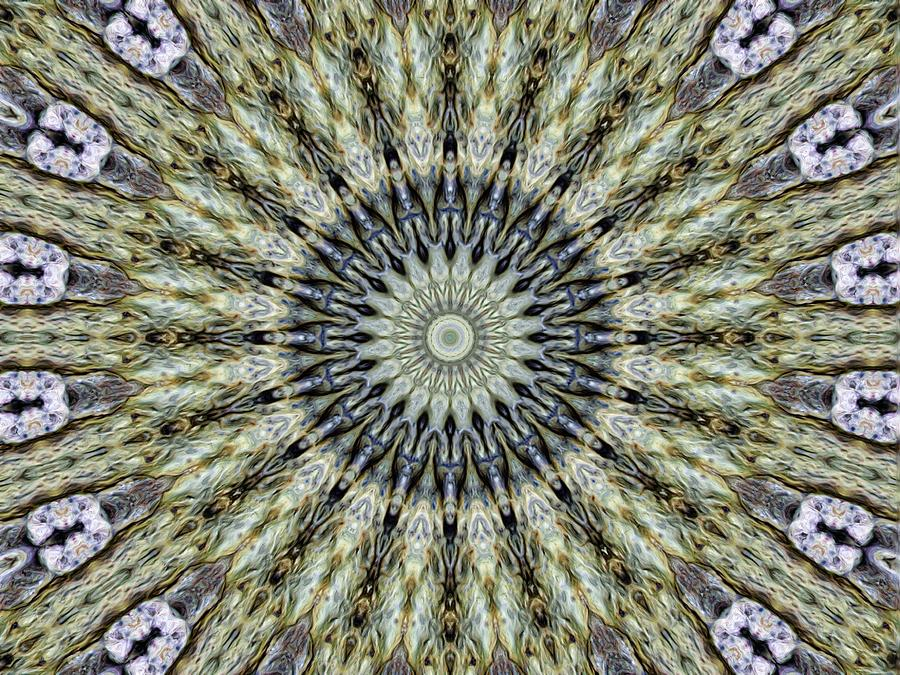 Abstract Photograph - Kaleidoscope 6 by Tom Druin