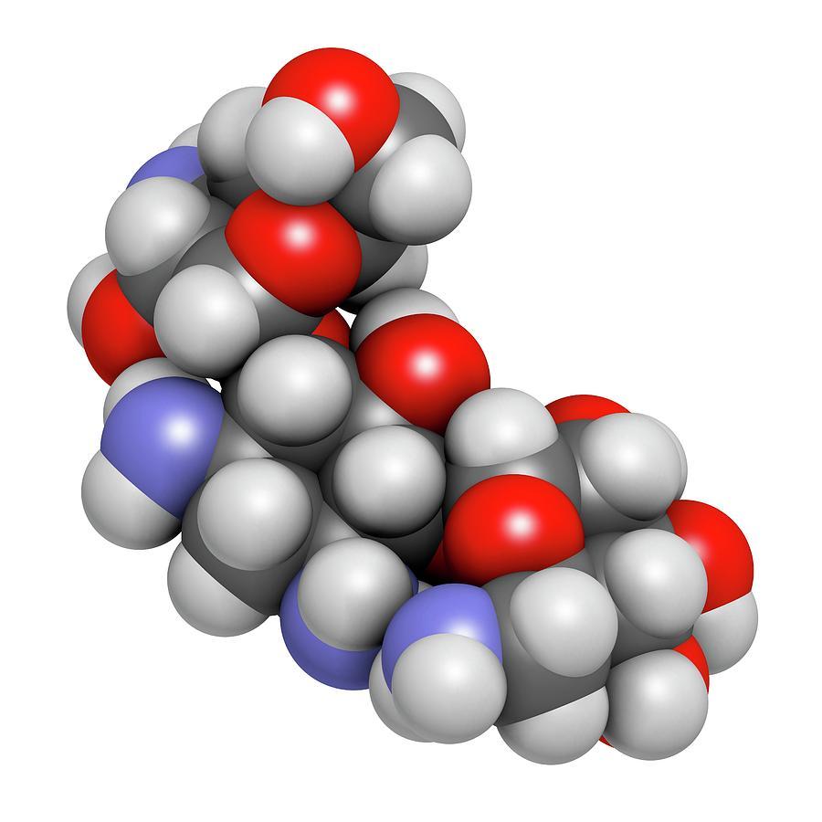 Aminoglycoside Photograph - Kanamycin Antibiotic Drug Molecule by Molekuul