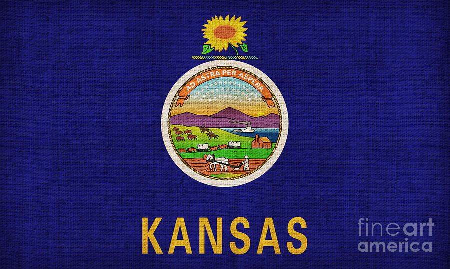 Kansas Painting - Kansas State Flag by Pixel Chimp