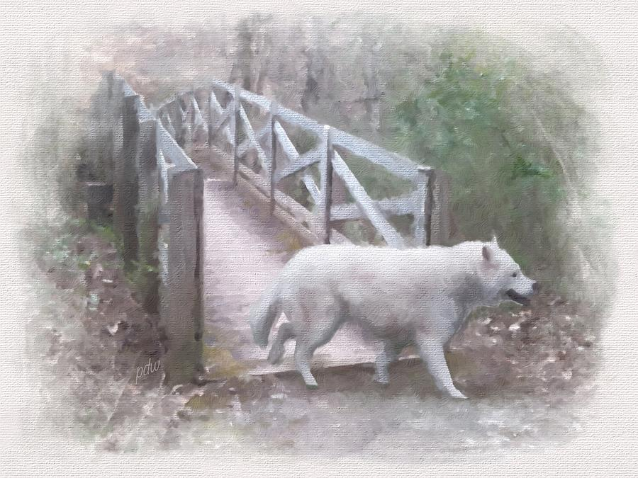 Smoky Mountains Painting - Kashada At The Foot Bridge by Philip White