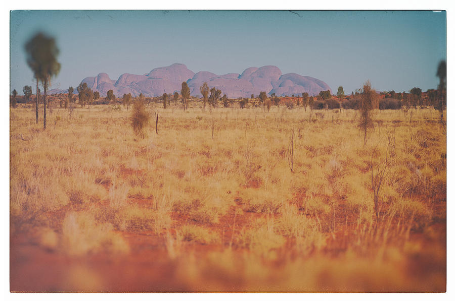 Outback Photograph - Kata Tjutad Horizon by Ross Carroll