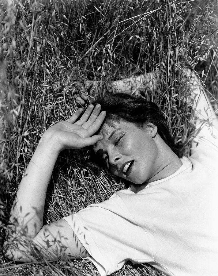 Katharine Hepburn Lying Down In The Grass Photograph by George Hoyningen-Huene