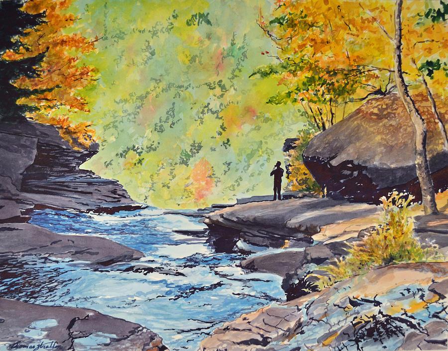 Landscape Painting - Katterskill Falls by Thomas Stratton