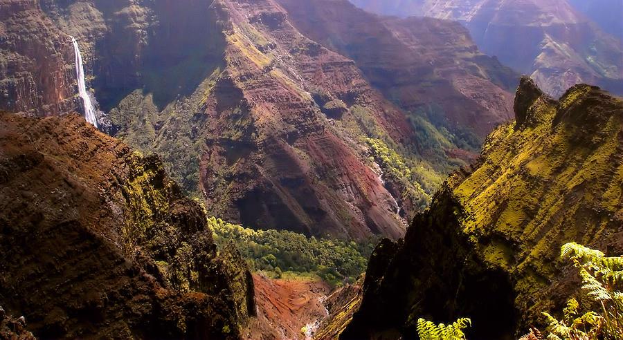 Hawaiian Photograph - Kauai Colors by Katie Wing Vigil