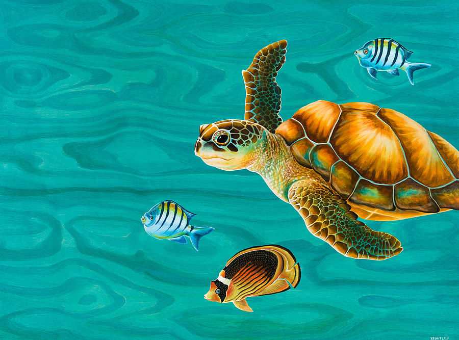Kauila Sea Turtle Painting By Emily Brantley