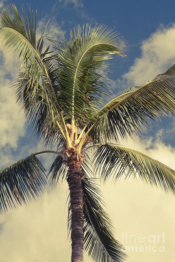 Aloha Photograph - Kaukahi by Sharon Mau
