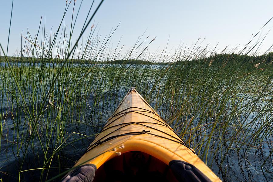 Kayak Photograph - Kayaking Through Reeds Bwca by Steve Gadomski
