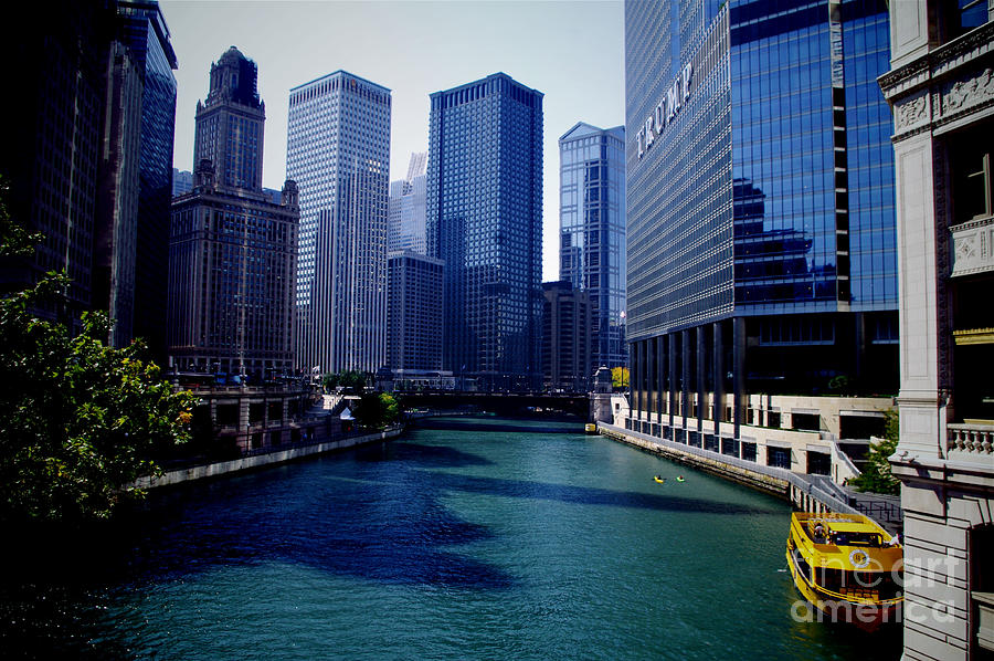 Kayaks on the Chicago River by Frank J Casella