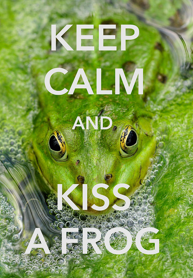 Keep Calm And Kiss A Frog Funny Quote