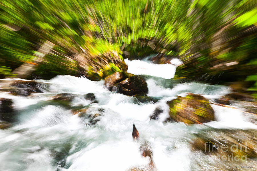 Water Photograph - Keep Your Focus by Chris Heitstuman