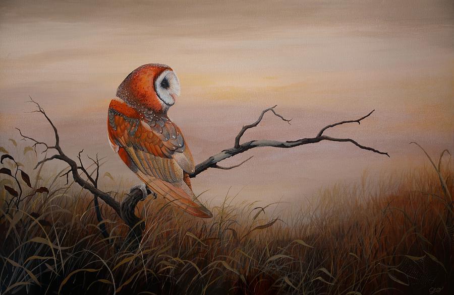 Barn Owl Painting - Keeper Of Dreams by Charles Owens