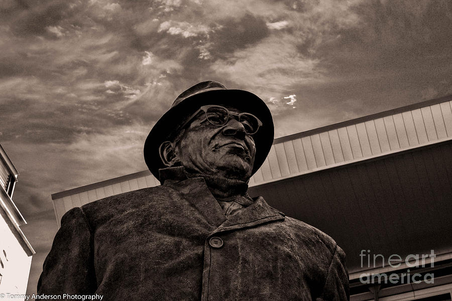Lambeau Field Photograph - Keeping Watch Bw by Tommy Anderson