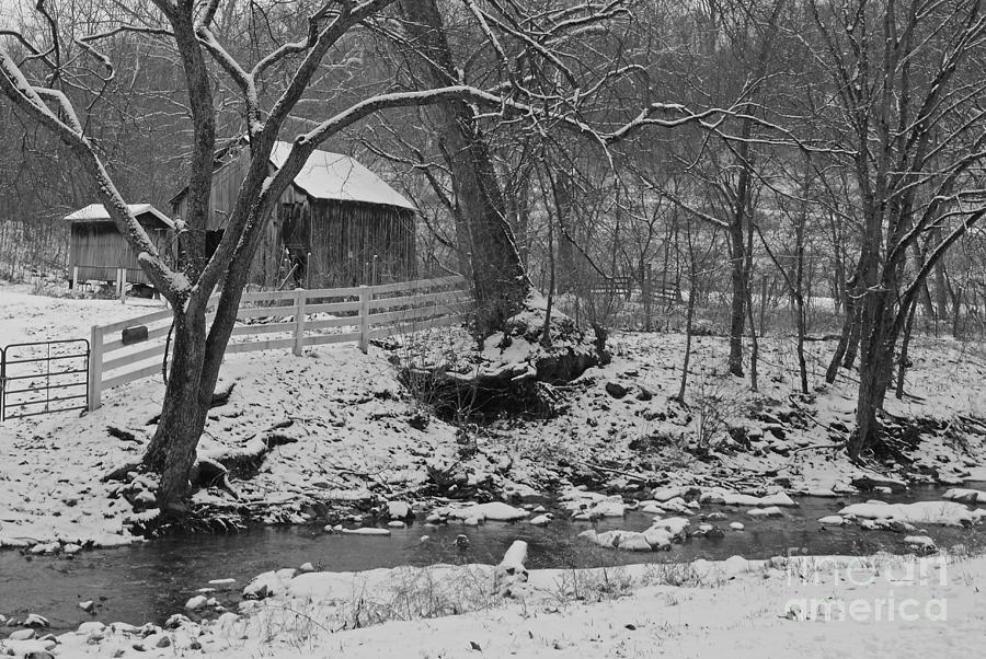 Rural Photograph - Kentucky Snow by Mary Carol Story
