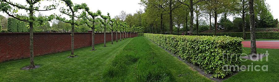 Keukenhof Gardens Photograph - Keukenhof Gardens Panoramic 10 by Mike Nellums