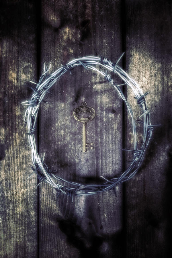 Wire Photograph - Key Of A Treasure Chest by Joana Kruse