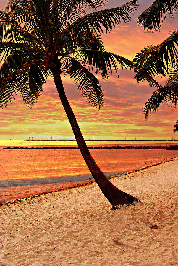 Beach Photograph - Key West Beach by Marty Koch