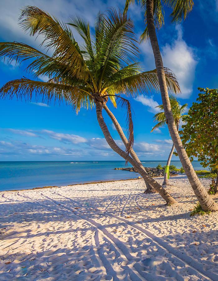 Key West Florida by Robert Bellomy