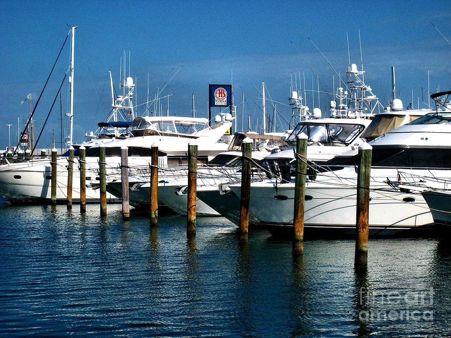 Water Photograph - Key West Marina by Claudette Bujold-Poirier