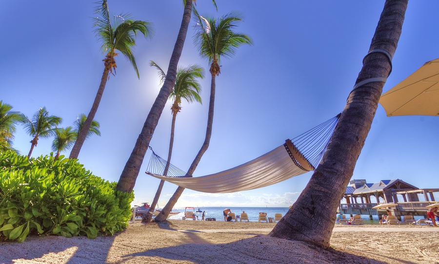 Key West Siesta Photograph by Danny Mongosa