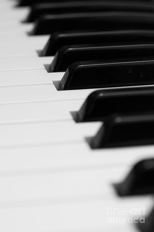 Accord Photograph - Keyboard by Svetlana Sewell