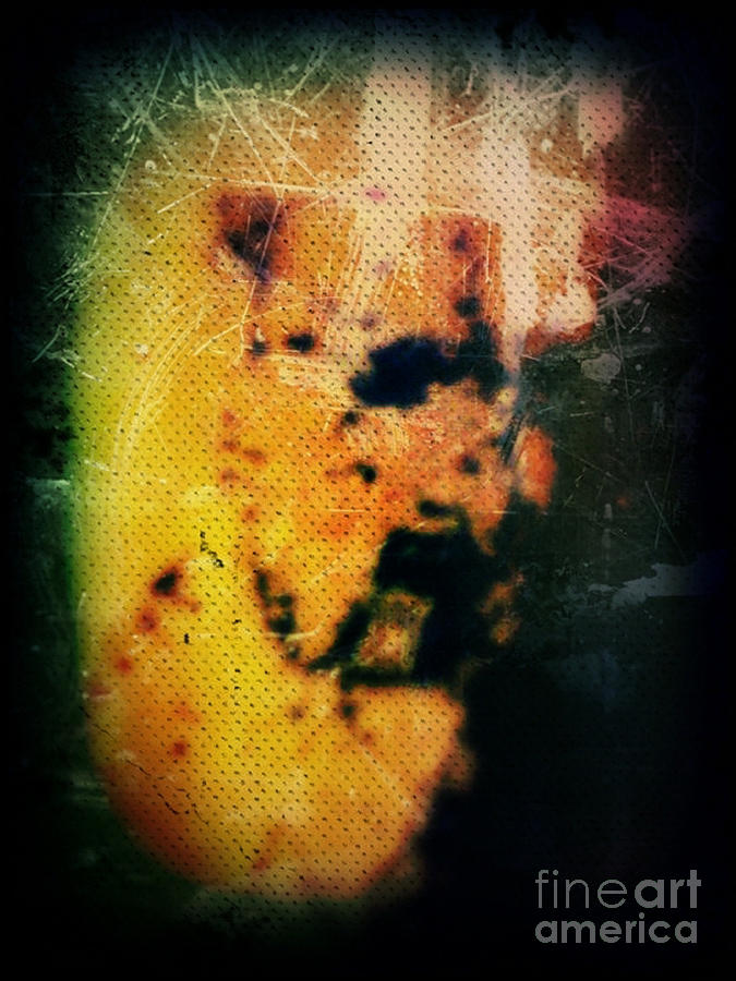 Abstract Mixed Media - Khaf by Daniel Brummitt