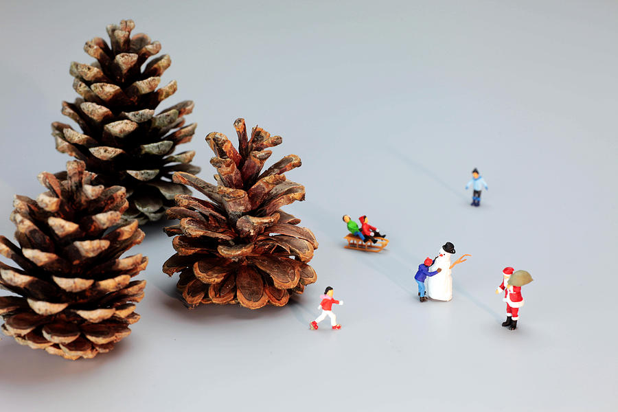 Kids Painting - Kids Merry Christmas By Pinecones by Paul Ge