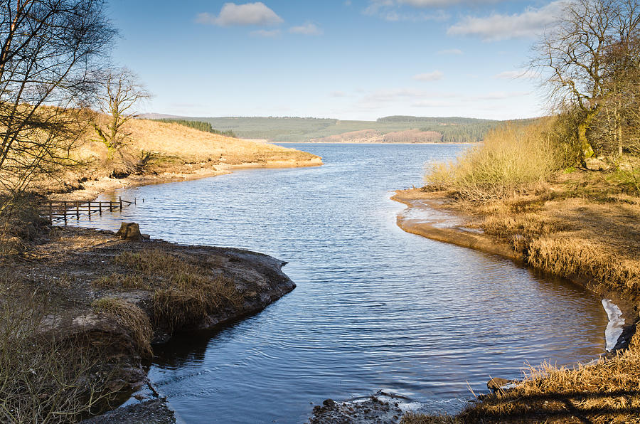 Northumberland Photograph - Kielder Water Inlet by David Head
