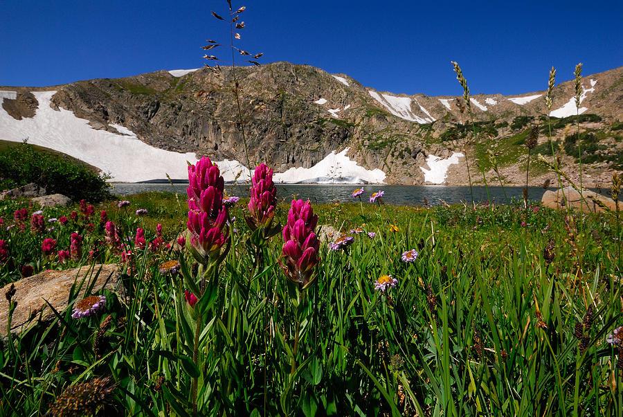 Mountain Photograph - King Lake by Stefan Carpenter