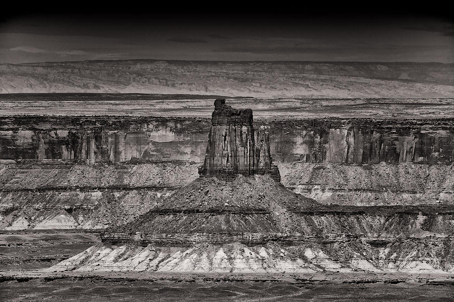 America Photograph - King Of The Land by Juan Carlos Diaz Parra