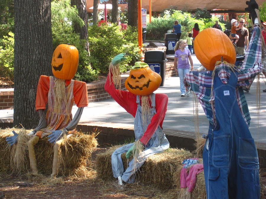 Kings Photograph - Kings Dominion - Halloween - 12124 by DC Photographer