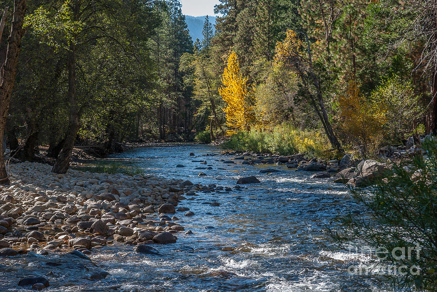 Kings River Photograph - Kings River 1-7813 by Stephen Parker